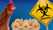 netz.bio, sei.bio, Netz, Bio, Bioverbraucher, Bio-Verbraucher, Netzwerk, Suchmaschine, Liste, Bio-Reisen, Reisen, Bio-Adressen, Adressen, Bio-Anbieter, Anbieter, Bio-Erzeuger, Erzeuger, Bio-Dienstleister, Dienstleistungen, Bio-Berater, Bio-Beratung, Bio-Produzenten, Produzenten, Bio-Händler, Händler, Laden, Läden, Bio-Produkte, Bio-Erzeugnisse, Bio-Blog, Info-Brief, Bio-Nachrichten, Assoziative Zusammenarbeit, Bio-Angebote, Bio-Termine, Bio-Ausflüge, Bio-Landwirtschaft, Landwirtschaft und Handel, Wissenschaft/Forschung, Qualitäts- und Preisrecherchen, Grüne Gentechnik, BioMetropole Nürnberg, Biometropole, Bio Metropole, Verbrauchermeinung, Rezept des Monats, Rezepte, Online-Shops, Online Shop, Demeter, Bioland, Naturland, Biokreis, Bio-Kreis, Bio-Siegel, EG Öko Siegel, Siegel, Bio-Kochen, Bio-Gerichte, Bio-Rezepte, Bio-Einkaufen, Bio-Essen, Bio-Nachrichten, Bio-Veranstaltungen, Bio-Netz, Bio-Literatur, Bio-Angebote, Bio-Gesuche, Angebote und Gesuche, Bio-Berichte, Bio-Bilder, Mode, Urlaub, Reisen, Ausflug, Wein, Milch, Fleisch, Getreide, nachhaltig, fair, fair gehandelt, fair trade, Bauern, Winzer, Olivenöl, Öle, Massage, Wellness, Aktiv Urlaub, Reiterhof, Aktionen, Wolfgang Ritter, Deutschland, Bayern, Franken, Hessen, Baden Württemberg, Österreich, Italien, Griechenland, Frankreich, Dominikanische Republik, Malawi, Bio-Musterfarm, BioFach