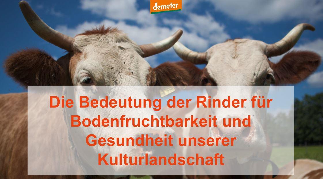 Die Bedeutung der Rinder für die Bodenfruchtbarkeit