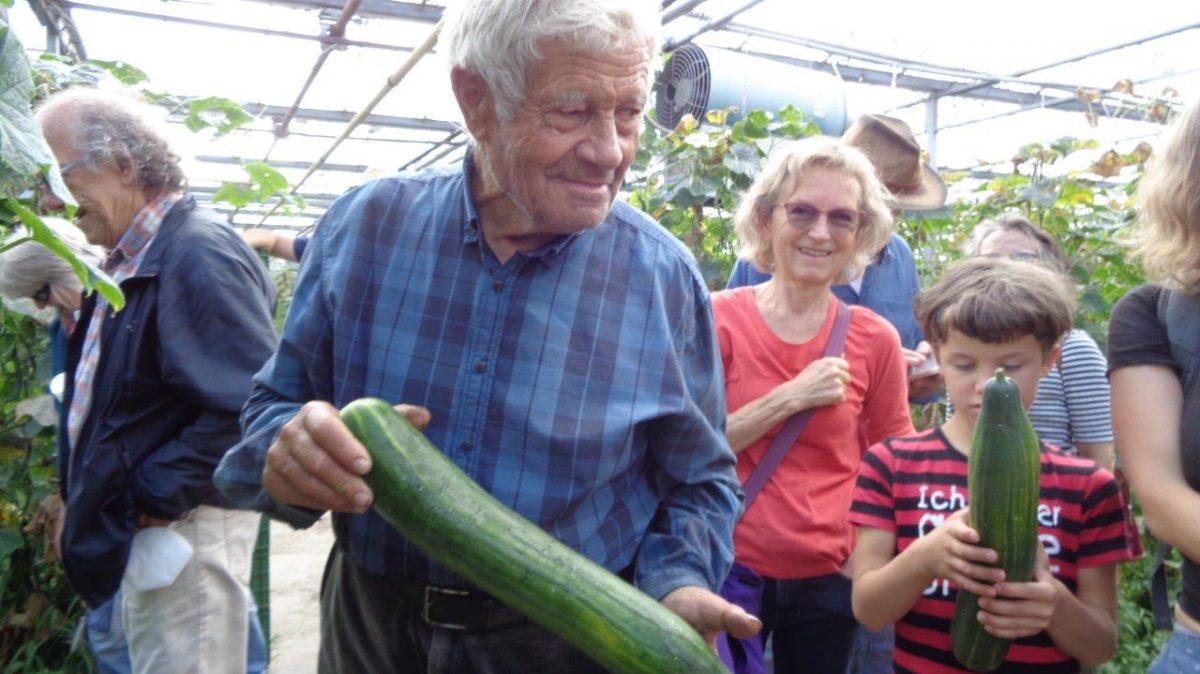 Erste Bio-Gemüsegärtnerei im Nürnberger Knoblauchsland
