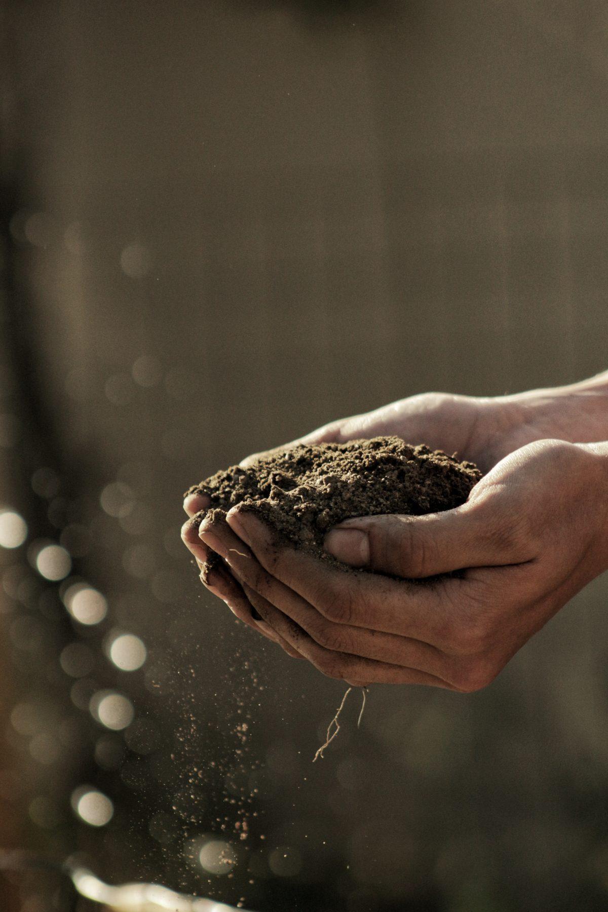 Das Geheimnis der biologisch-dynamischen Landbau-Methode wird gelüftet